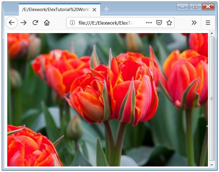 HTML Image Link Hyperlink Image HTML