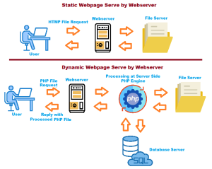 Dynamic vs Static Website Difference